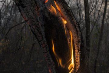 Incendios forestales Chiquitania Bolivia