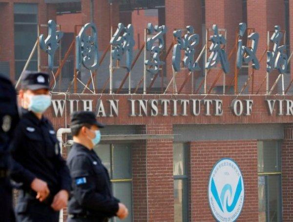 Wuhan Instituto de virología