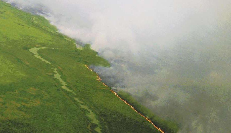 Otuquis incendios forestales