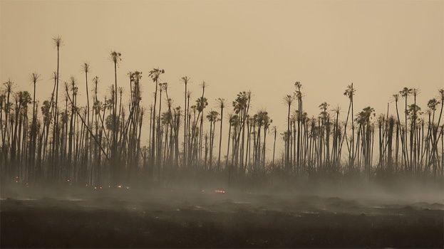 Incendios forestales Chiquitanía
