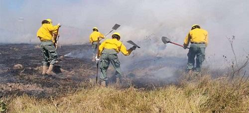 Incendios forestales Santa Cruz