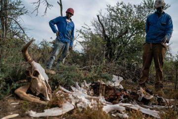 Sudáfrica sequía