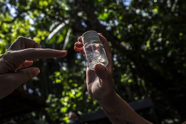 Amazonía Brasil, virólogos