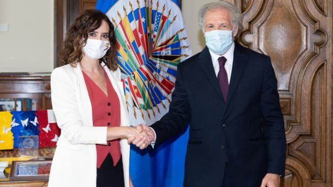 Isabel Ayuso y Almagro